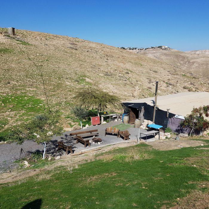 Bedouins 10