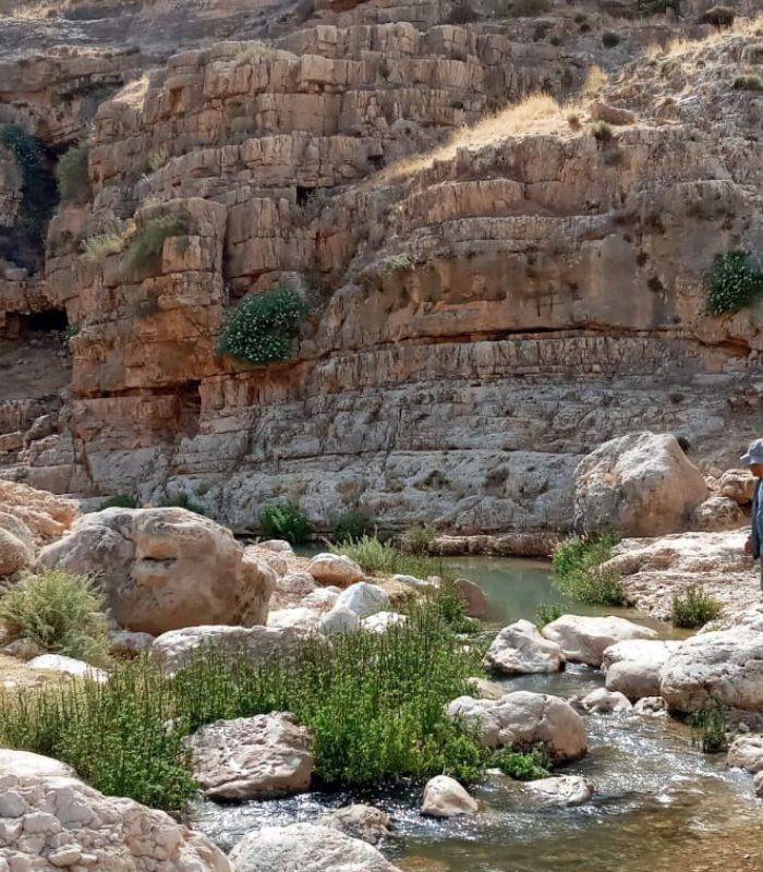 wadi 3