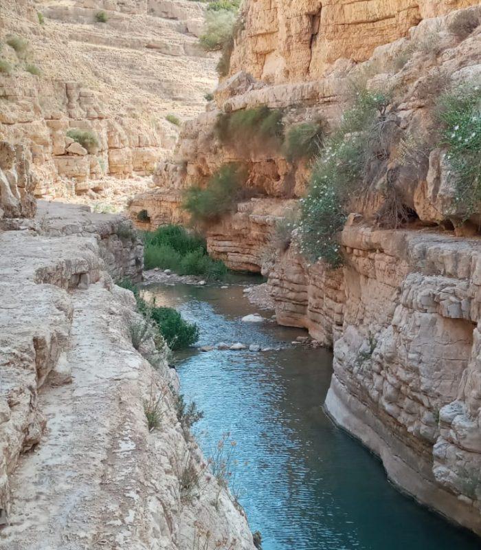wadi 4